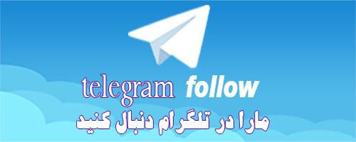 کانال تلگرام نتورک مارکتینگ