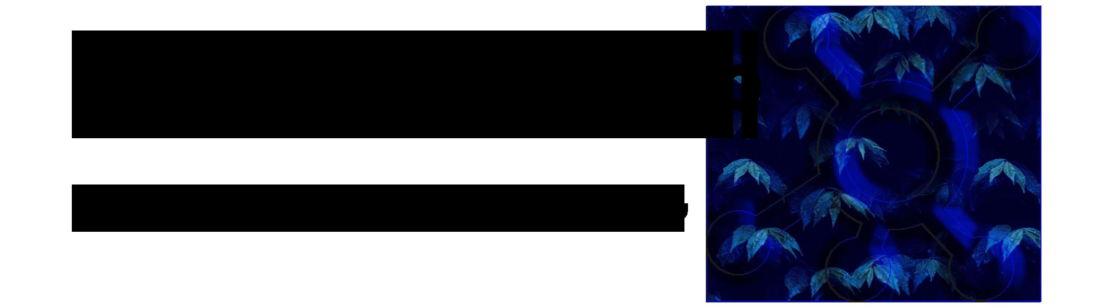 logo marketmlm22 1